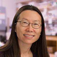 Molecular and Computational Biology Seminar: Yishi Jin, PhD (UC San Diego)