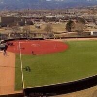 Mountain Lion Field