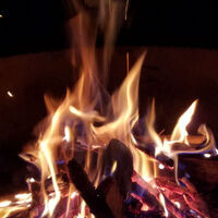 Campfire Tales: The Story of Thanksgiving