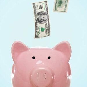 Investment Studies Program