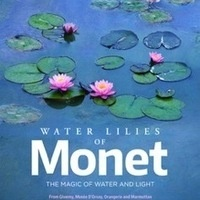 Great Art on Screen: Water Lilies of Monet