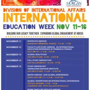IEW18: Global Perspectives on International Experiences