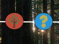 Ecology Trivia Night