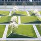 Landscape Architecture 4/539 Studio Review