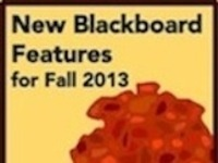 New Features in Blackboard Courses