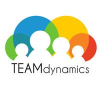 Team Dynamics (LSTD01-0054)