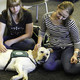 Final Bark Buddies at Norlin Library