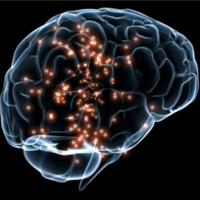 Cerebral Autoregulation in Aging, Hypertension and Alzheimer's Disease