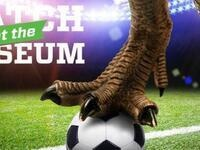 Match at the Museum: Portland Timbers Playoff Game