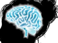 Brain 101 (Macon)
