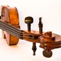 String Showcase II