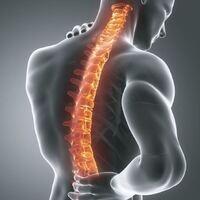 2019 USC Spine Symposium