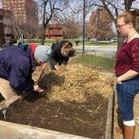 Garden Commons Spring Workdays