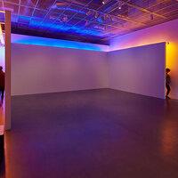 Bruce Nauman: Blue and Yellow Corridor
