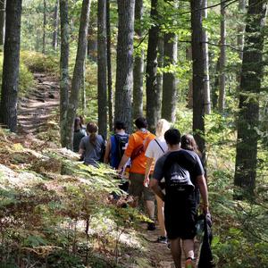 Bird Watching and Hiking: Outdoor Program Trip
