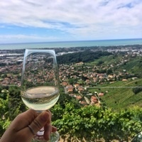 Wine Marketing in Siena, Italy: Info Session