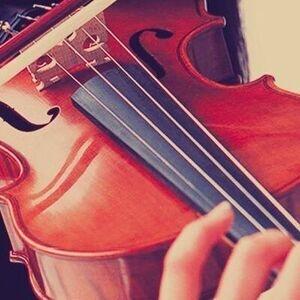Vivo Chamber Players Performance