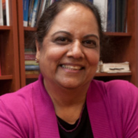 Education Research Initiative Seminar Series:  Pratibha Varma-Nelson