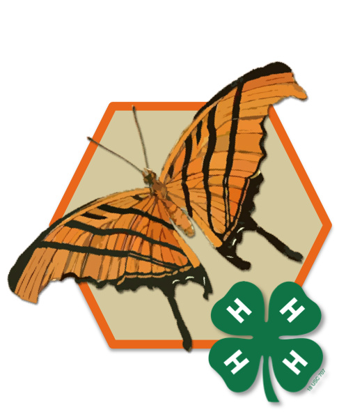 4-H Honey Bee Project - REGISTRATION