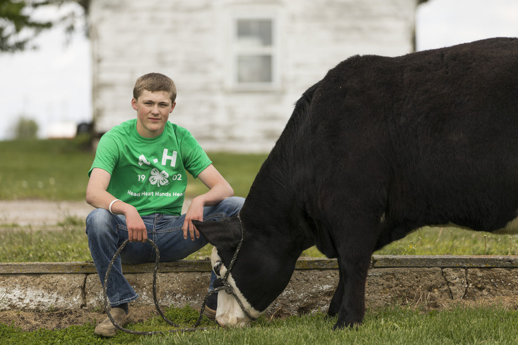 Livestock Knowledge College - REGISTRATION