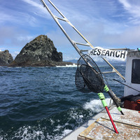 Science on Tap: Oregon Doesn't Stop at the Beach: A Virtual Tour of Oregon's Marine Reserve Sites