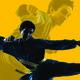 Martial Arts Workshops