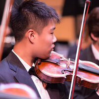 American Youth Philharmonic Orchestras presents AYDO & AYSE in Concert