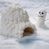 STEM Marshmallow Igloos