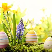 Teen Easter Egg Hunt