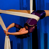 The Greatest Show On Earth Featuring The Empyrean Aerialists