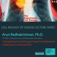 "Seminar: ""Using Bacterial and Fungal Toxins to Understand Cholesterol in Animal Cells"""