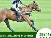 Sunday Polo at Eldorado Polo Club