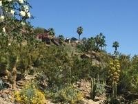 14th Annual Desert Garden Tour