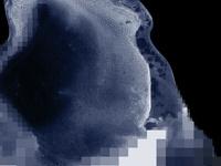 SAP Seminar Series, Aliens, Code-shifters, and Rude-Mapping, by Jaret Vadera