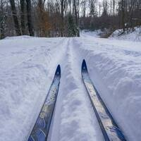 Cross Country Skiing for Beginners