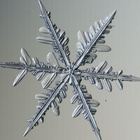 Homeschool CSI: Snow Science