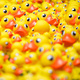 IT Security Pop Up: Get your ducks in a row!