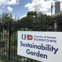 Sustainability Garden