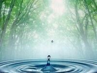 Water Wellness Series I