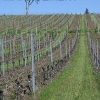 OSU Viticulture Extension - Vineyard Management Online Class, Spring 2019