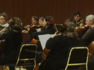 Red Chair Spotlight with Cayuga Chamber Orchestra