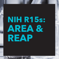 Recent updates to the R15 AREA and new R15 REAP programs (NIH Brownbag Series)