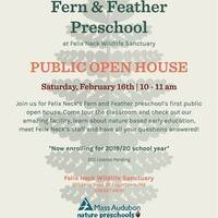 Open House: Fern & Feather Preschool