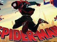 Movie Series: Spider-Man: Into the Spider-Verse