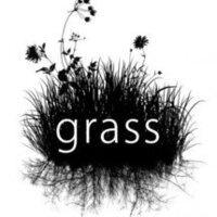 GRASS Meeting