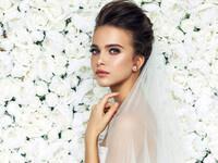 Bridal Show Case