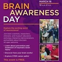 Brain Awareness Day at the Medical Museum