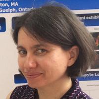 "Seminar: Dr. Mira Krendel ""The Tie that Binds: Class I Myosins at the Membrane-Actin Interface"""