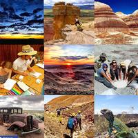 Info Session: Summer Study Abroad Paleontology Field Observation & Methods