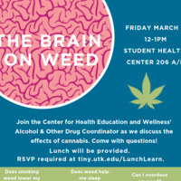 Lunch & Learn: The Brain on Weed